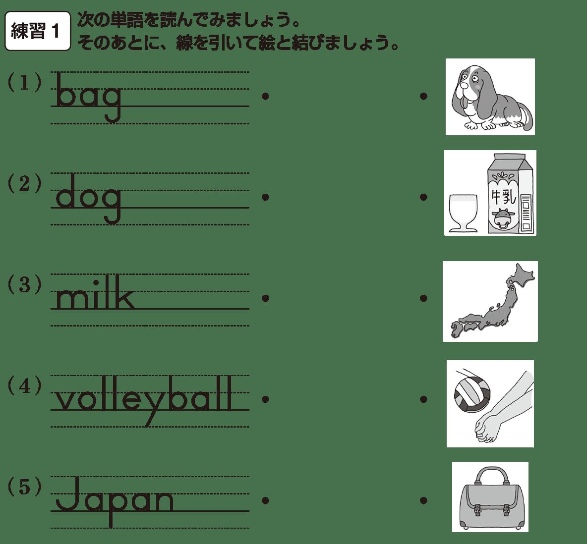 中1 英語3 練習1