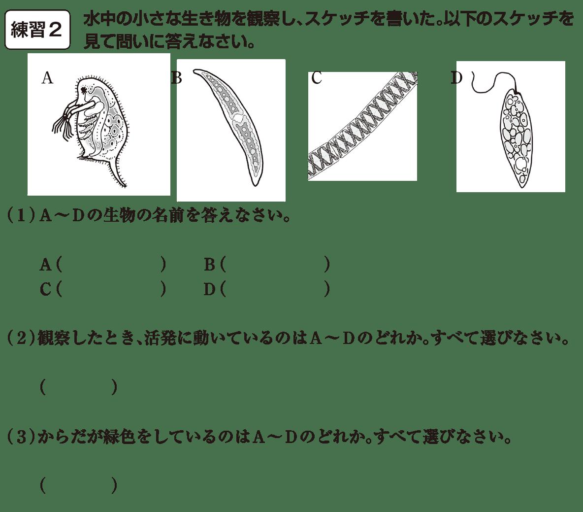 中1理科 生物3 練習2 カッコ空欄