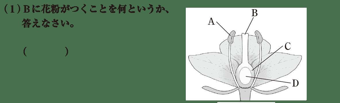 中1 理科生物5 練習1(1) 答えなし A~Dのイラストあり