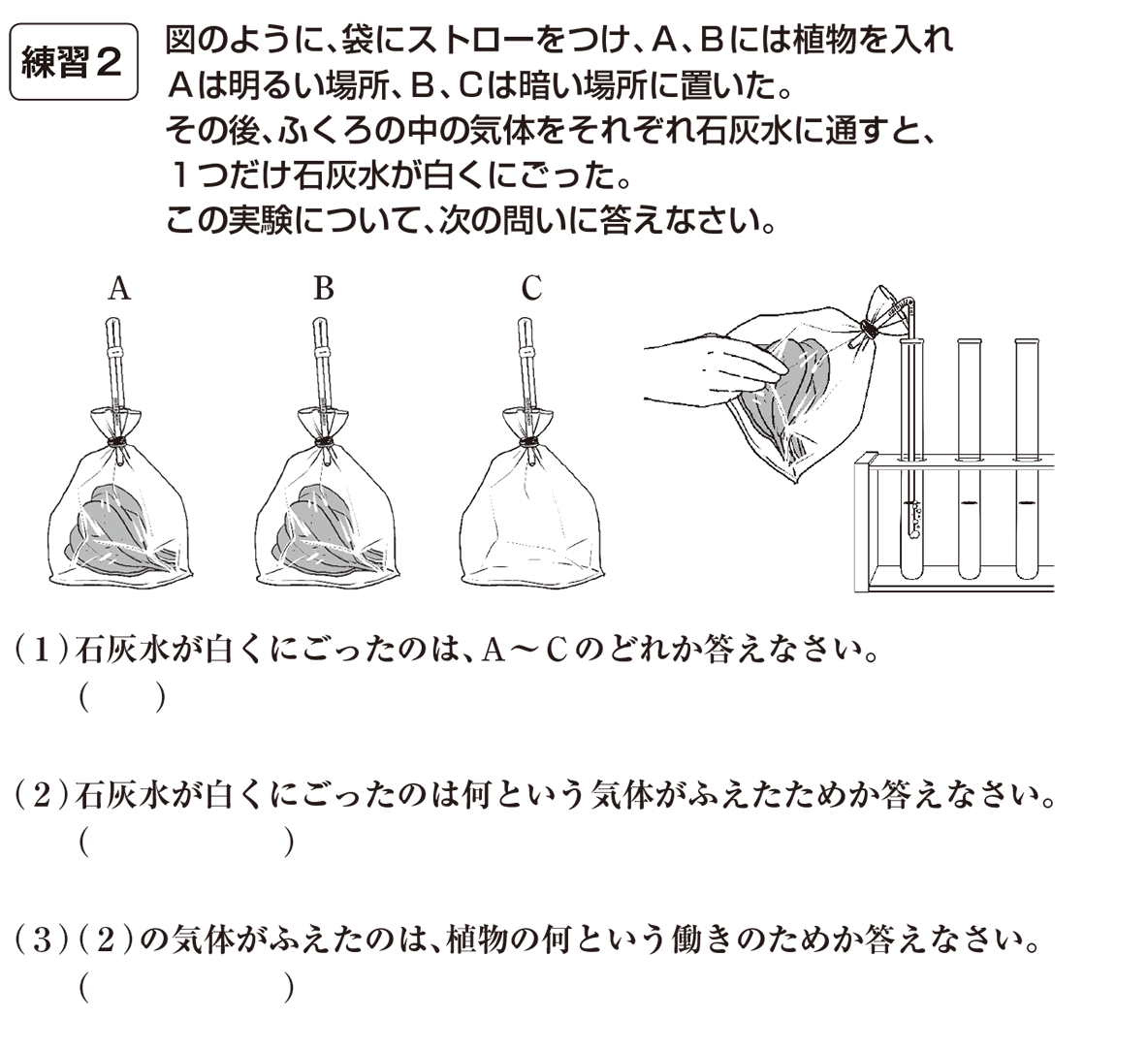 中1 理科生物10 練習2(答えなし