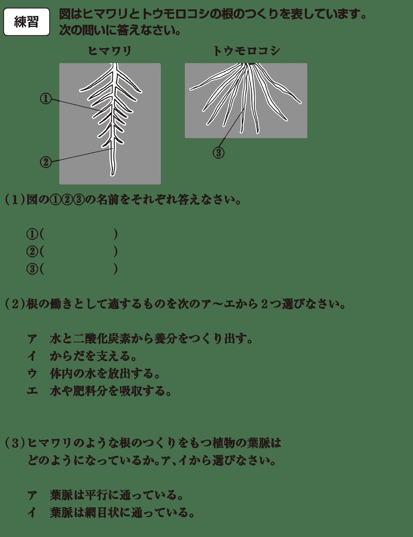 中1 理科生物13 練習(答えなし