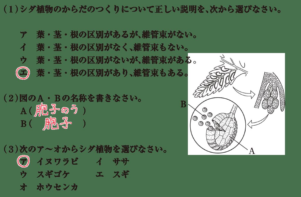 中1 理科生物14 練習2
