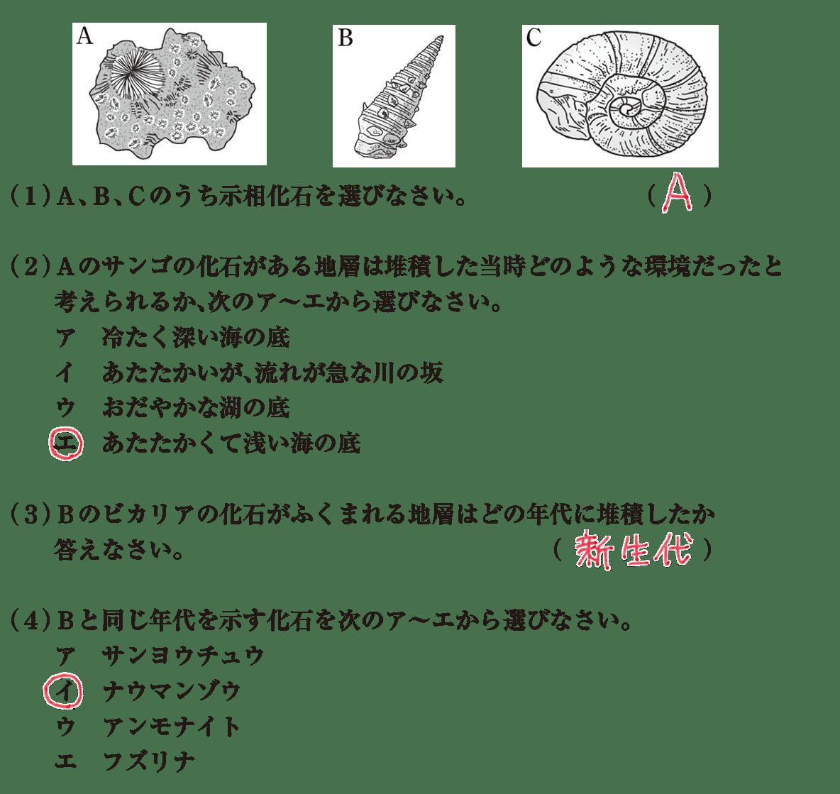 中1 理科地学9 練習2 答えあり