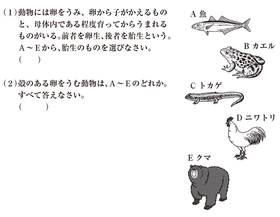 中2 理科生物14 練習1 (1)(2)のみ 答えなし
