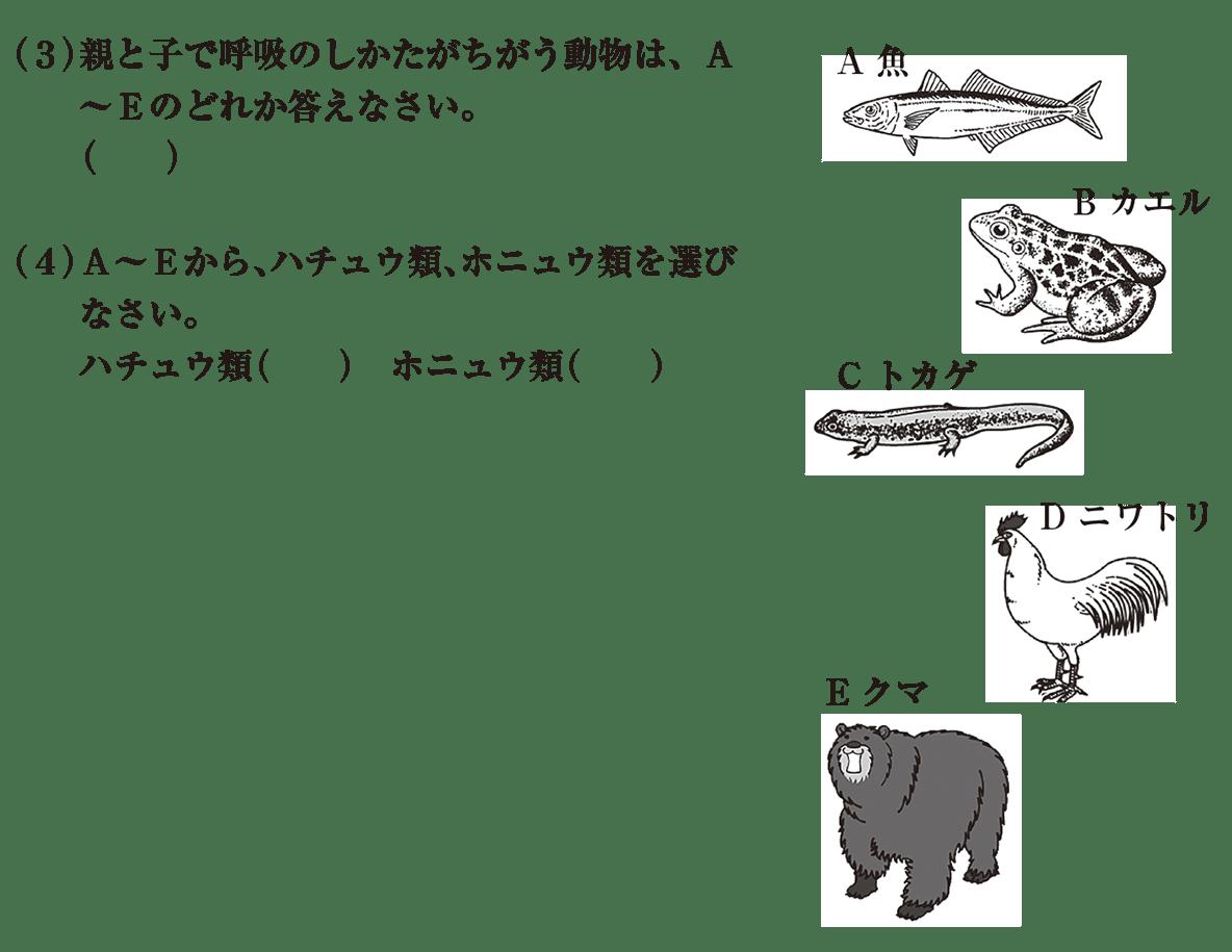 中2 理科生物14 練習1 (3)(4)のみ 答えなし