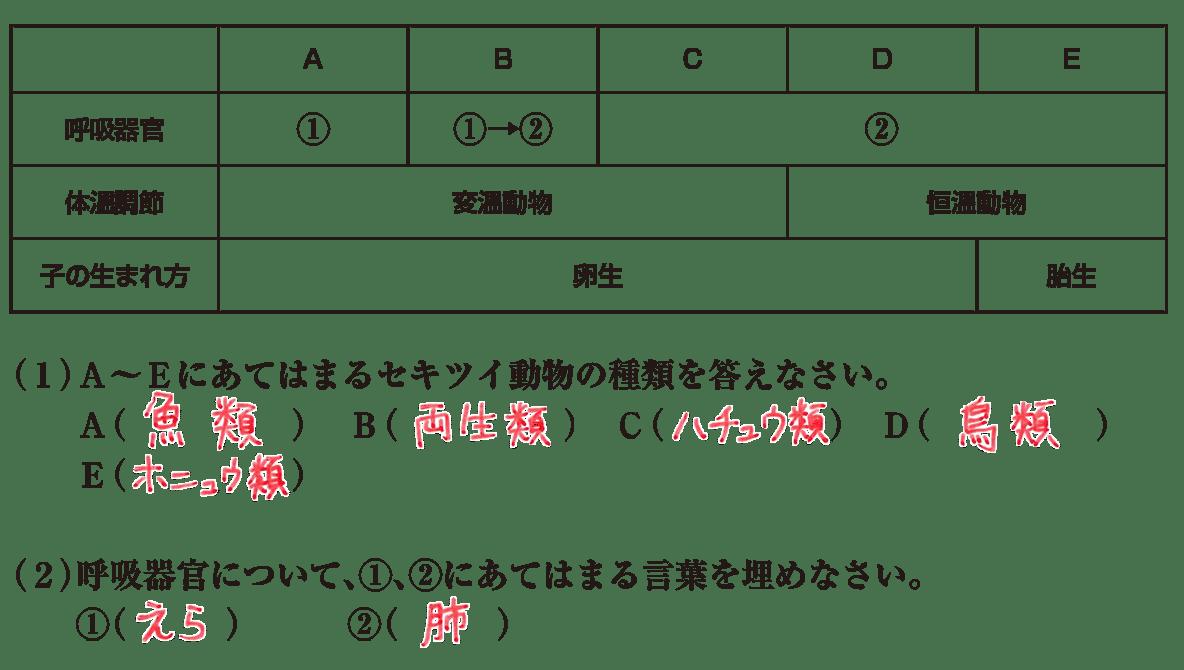中2 理科生物14 練習2 答えあり