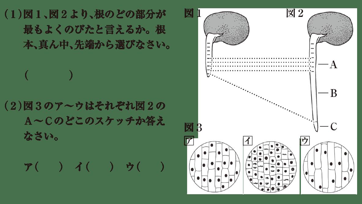 中3 生物1 練習1 (1)(2)と図1~3を表示(冒頭の問題文不要)答えなし