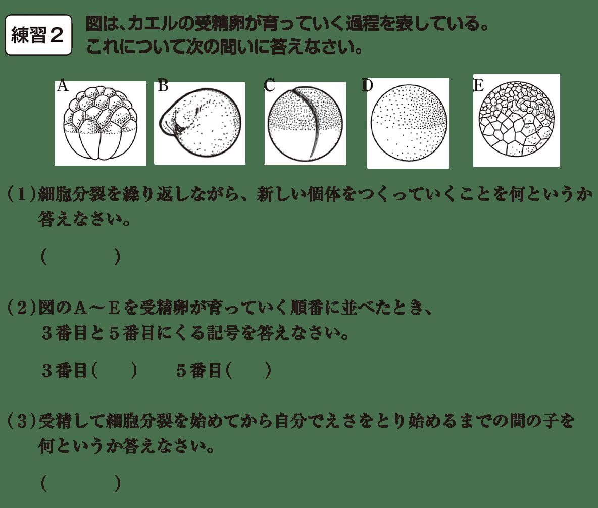 中3 生物6  練習2 答えなし