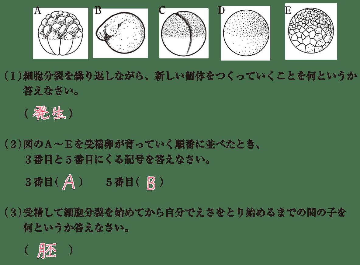 中3 生物6  練習2 答え入り
