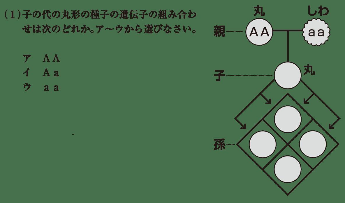 中3 生物9  練習 (1)と右の図を表示