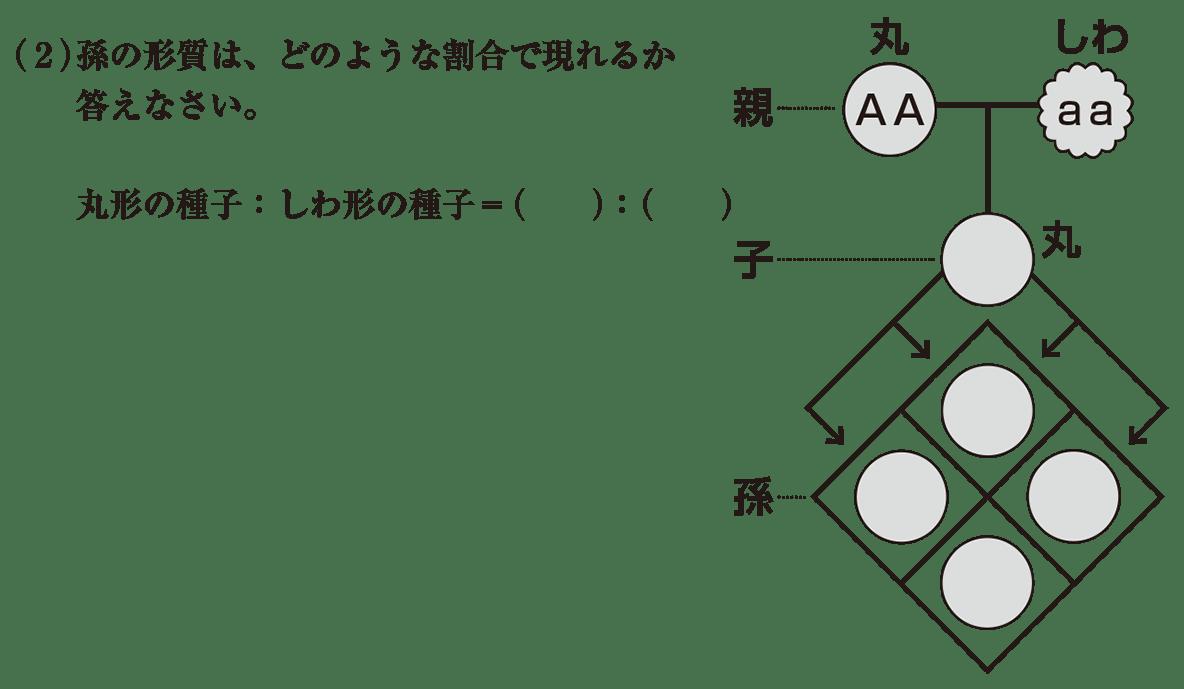 中3 生物9  練習 (2)と右の図を表示
