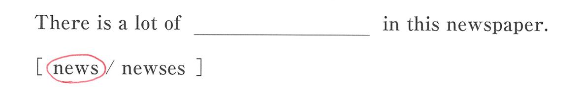 高校英語文法 名詞・冠詞1・2の例題(4) 答え入り アイコンなし