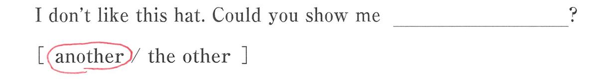 高校英語文法 代名詞19・20の例題(2) 答え入り アイコンなし