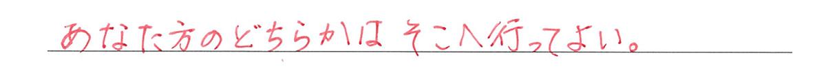 高校英語文法 代名詞21・22の練習(1)の答え アイコンなし