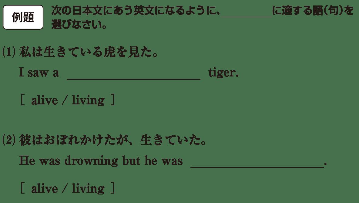 高校英語文法 形容詞・副詞3・4の例題(1)(2) アイコンあり