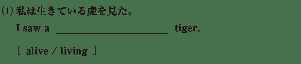 高校英語文法 形容詞・副詞3・4の例題(1) アイコンなし