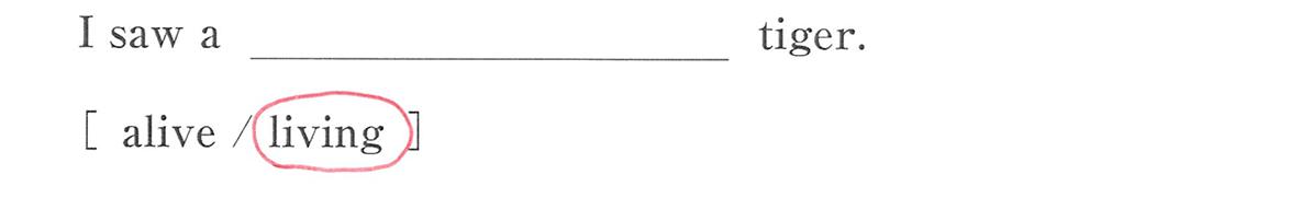 高校英語文法 形容詞・副詞3・4の例題(1) 答え入り アイコンなし