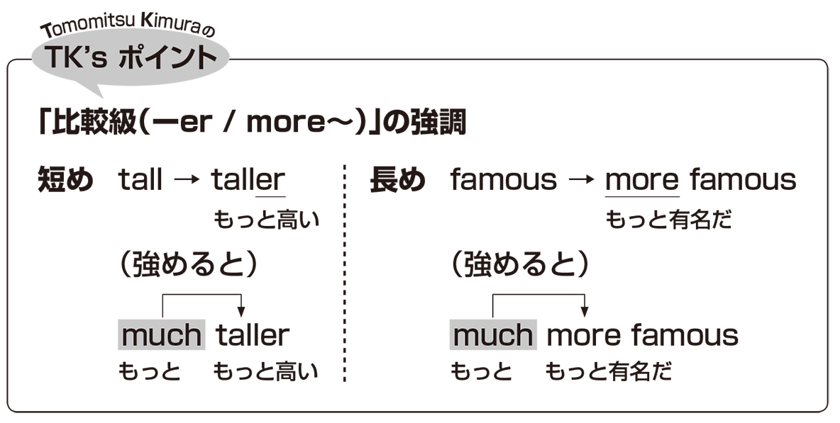 高校英語文法 比較5・6のポイント アイコンあり