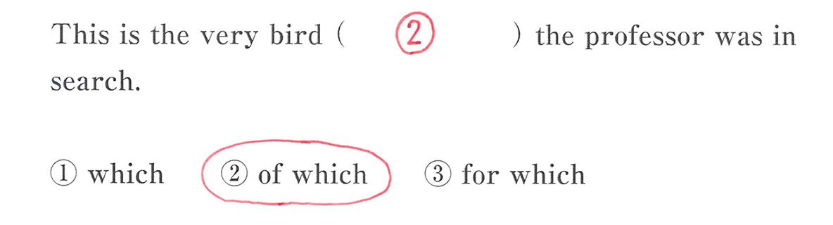 高校英語文法 関係代名詞9・10の入試レベルにチャレンジ 答え入り アイコンなし