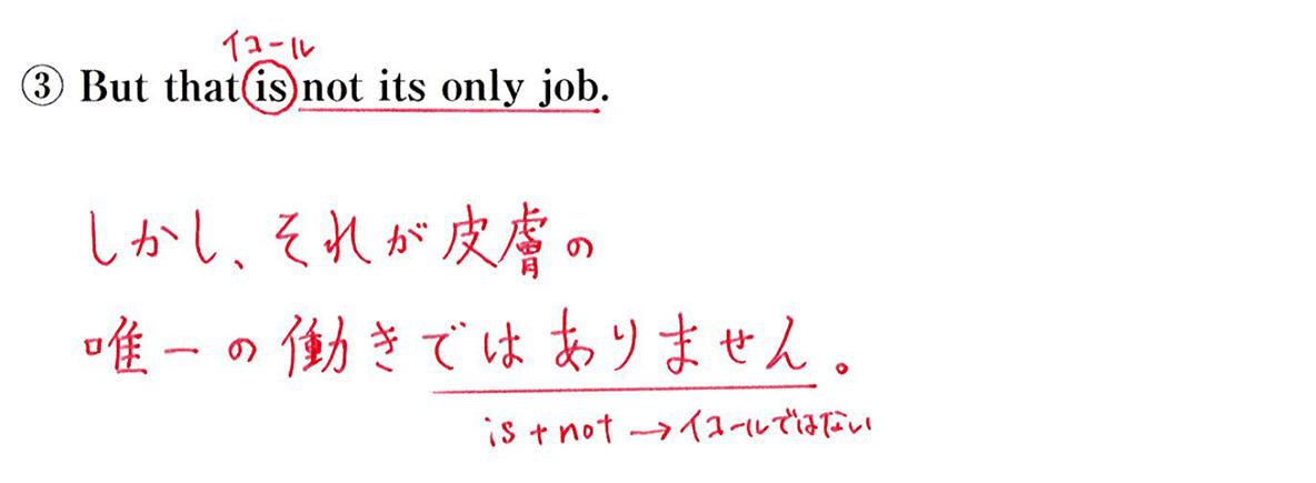 ③の英文書き込みアリ+和訳
