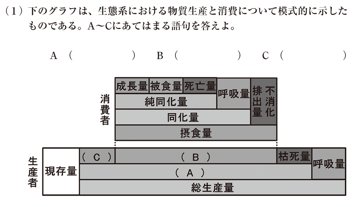 高校 生物 生態1 練習 練習(1)