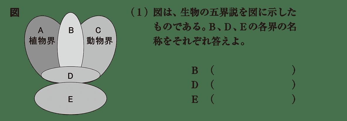 高校 生物 分類13 演習2 演習2(1)