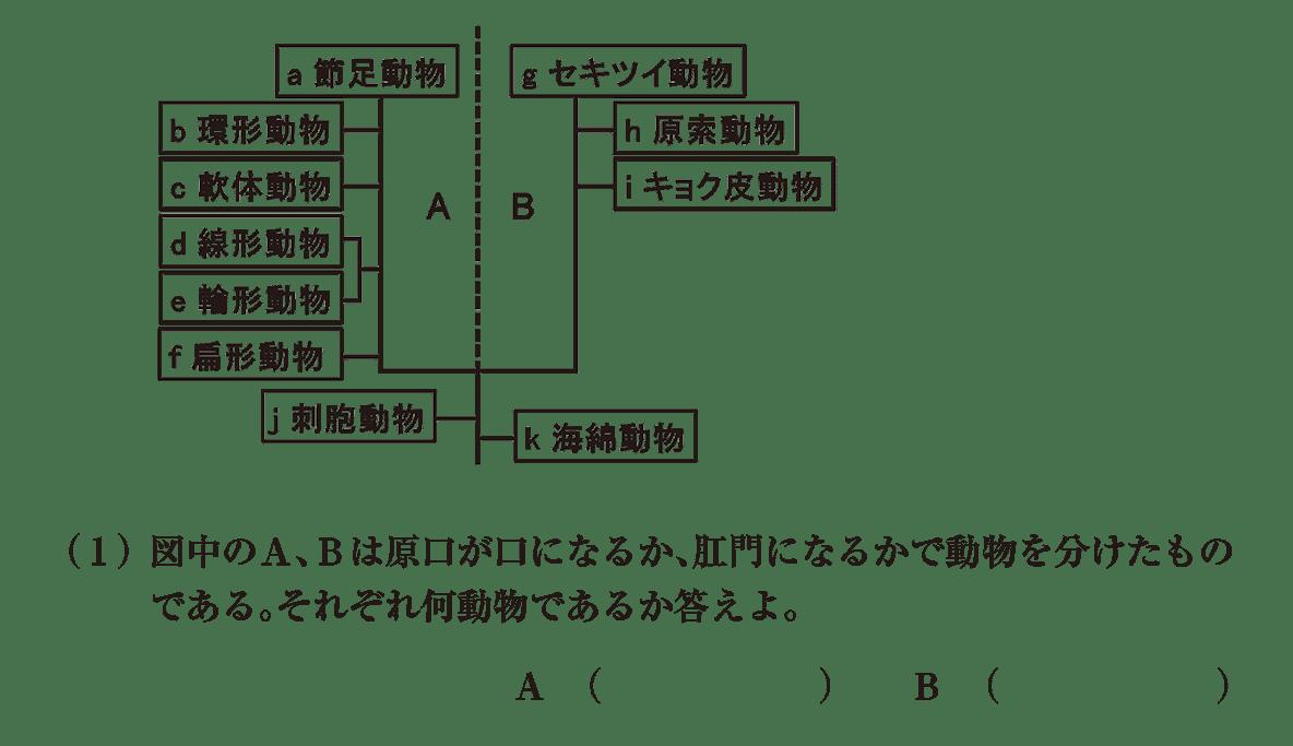 高校 生物 分類13 演習3 演習3(1)