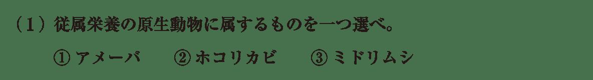 高校 生物 分類4 練習 練習(1)