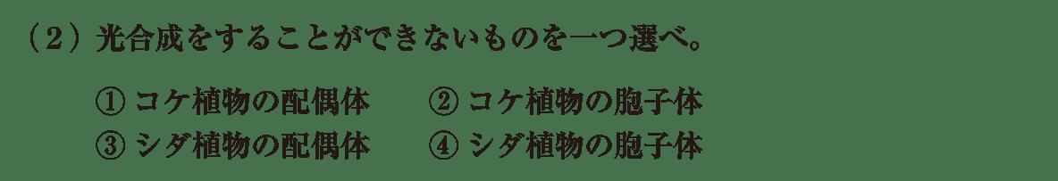 高校 生物 分類6 練習 練習(2)