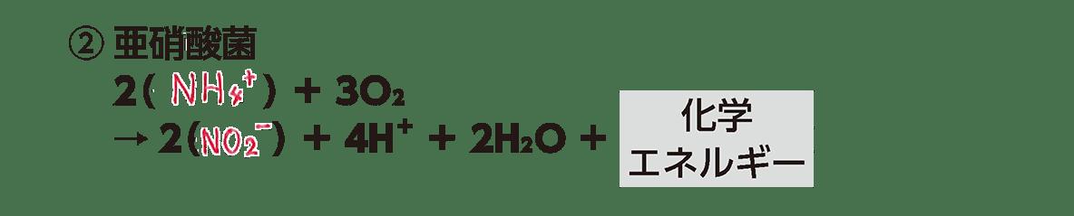 高校 生物 代謝8 ポイント2 ②の化学反応式・すべてうめる・カルビン・ベンソン回路は除く