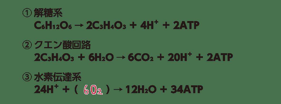 高校 生物 代謝15 ポイント1 3つの化学反応式のみ・すべてうめる