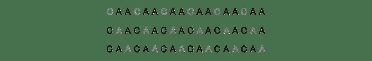 高校 生物 遺伝7 ポイント3 CAACAA・・・の塩基配列一列のみ・鍵括弧や文字などすべて除く