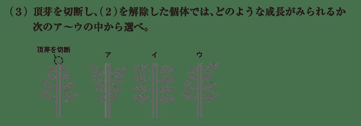 高校 生物 植物生理6 練習 練習(3)