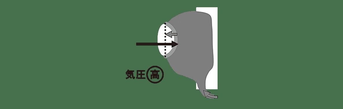 高校 生物 動物生理4 ポイント3 高気圧の中耳の図