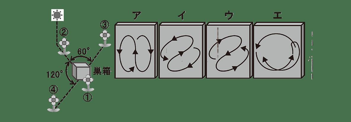 高校 生物 動物生理28 練習 図