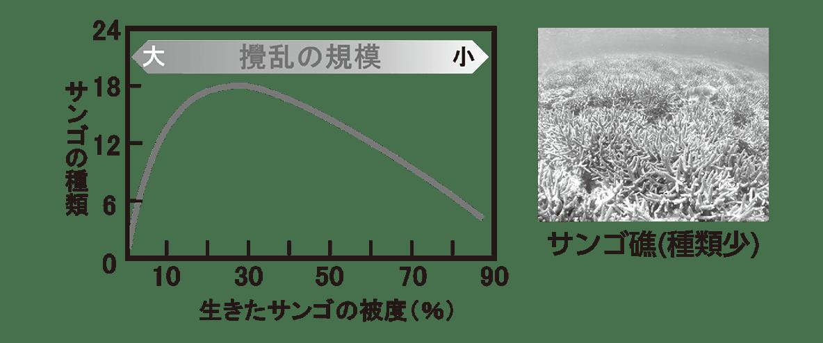 高校 生物 個体群11 ポイント3 グラフと右上写真