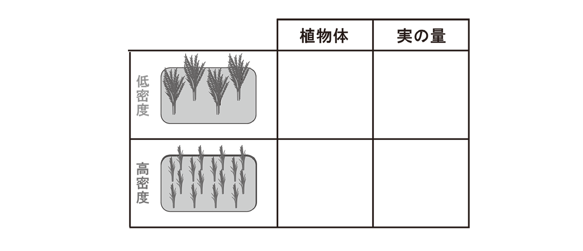 高校 生物 個体群2 ポイント3 表、内側の4枠空ける