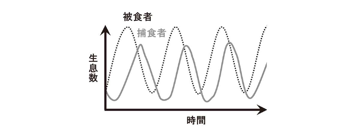 高校 生物 個体群8 ポイント3 グラフ