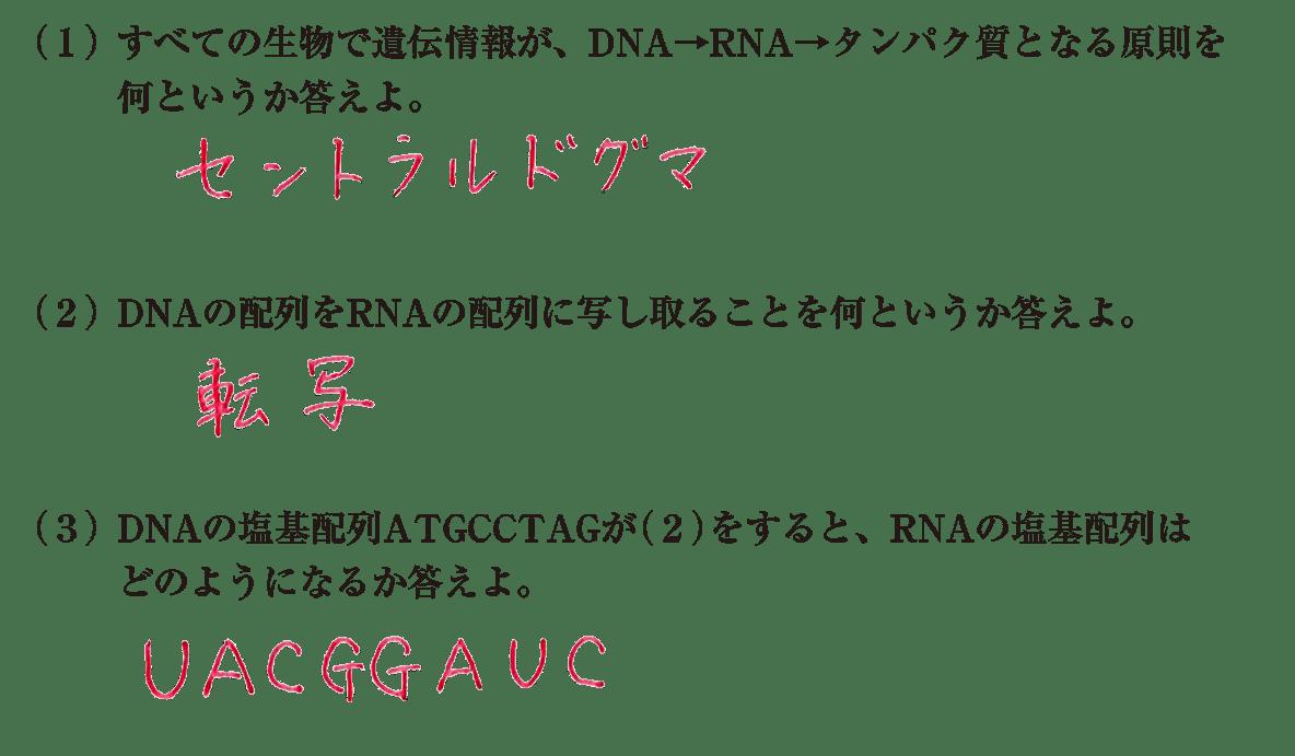 高校 生物基礎 遺伝子6 練習答え