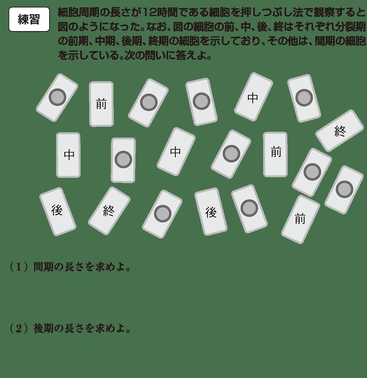 高校 生物基礎 遺伝子21 練習 カッコ空欄