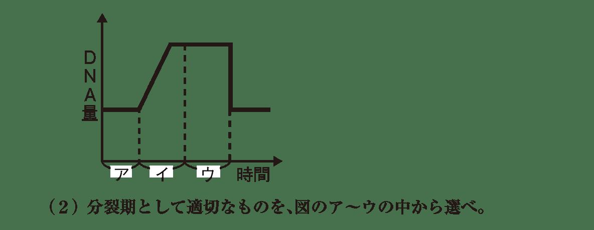 高校 生物基礎 遺伝子22 ポイント2 グラフと(2)