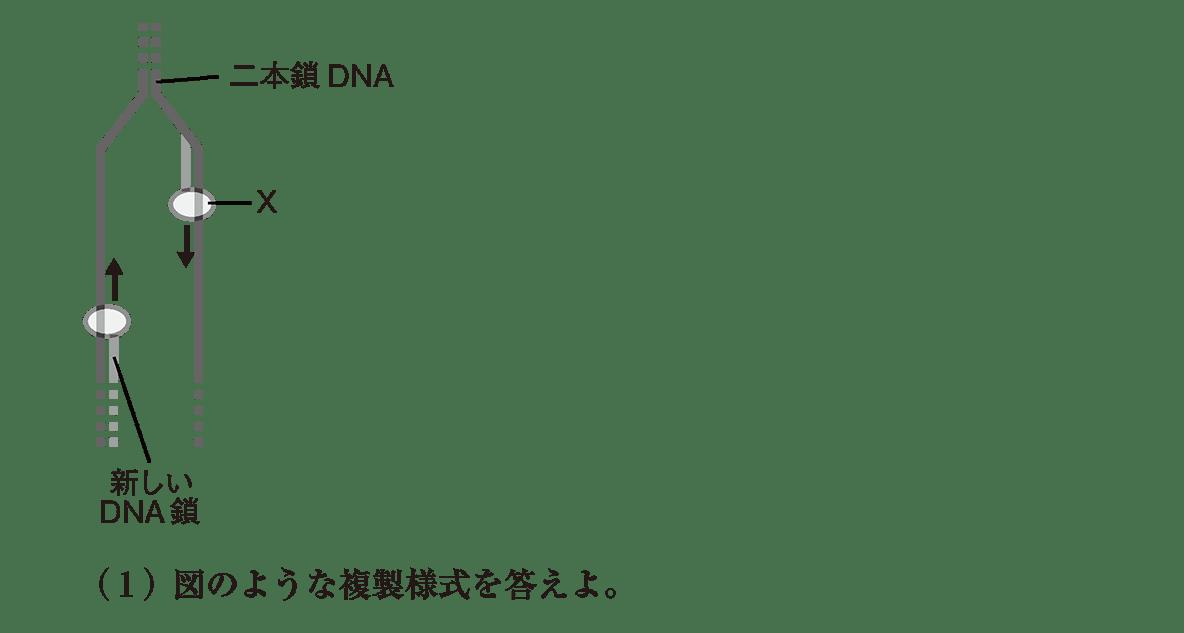 高校 生物基礎 遺伝子22 演習3 図と(1)