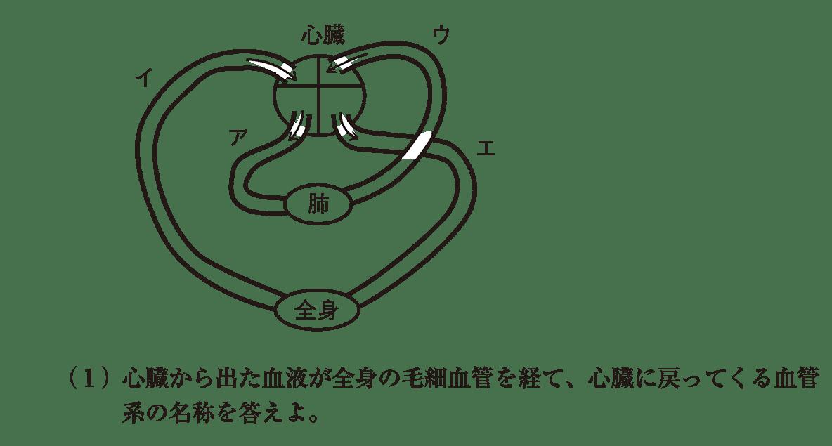 高校 生物基礎 体内環境の維持27 演習1 図と(1)