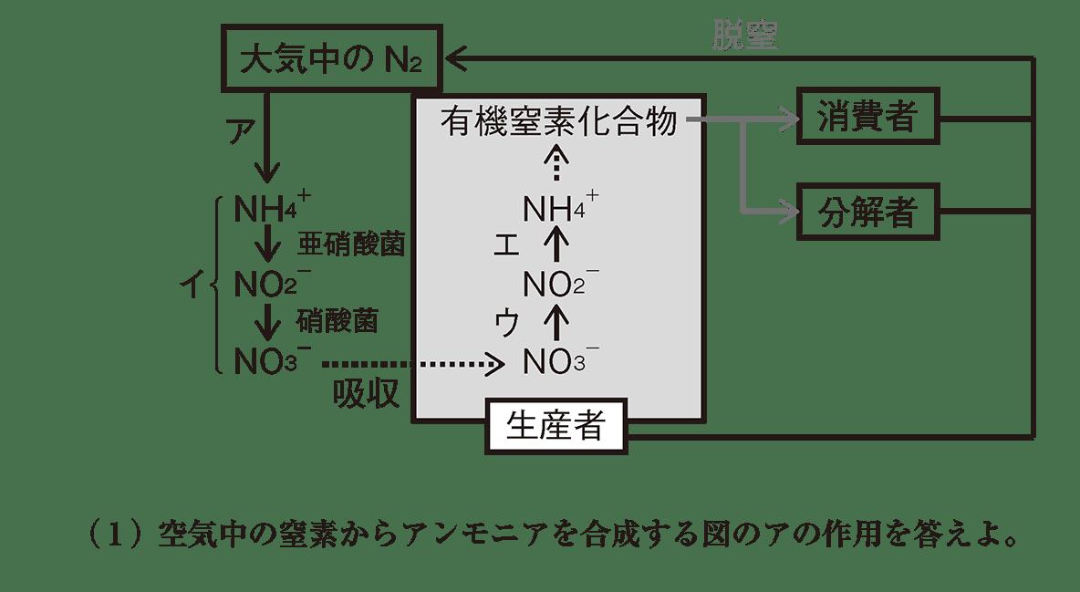 高校 生物基礎 生態系10 演習3 図と(1)