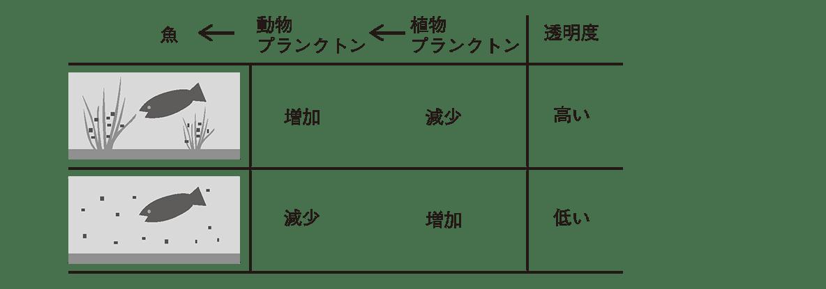 高校 生物基礎 生態系11 ポイント1 ポイントは除く 3段表の1・2・3段目まで