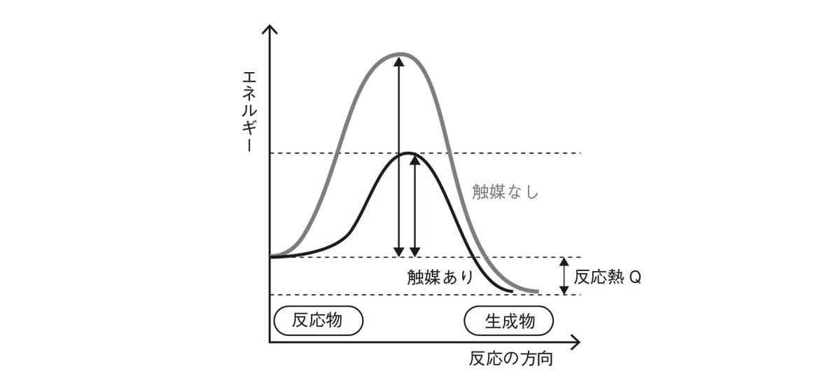 高校化学 化学反応の速さと平衡5 ポイント2 答えあり