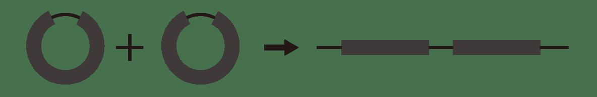 高校 化学 6章 1節 3 2 「開環重合」の下の図
