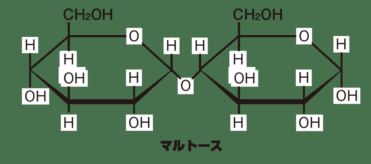 高校 化学 6章 2節 12 1 図の矢印より下(マルトースの構造式)
