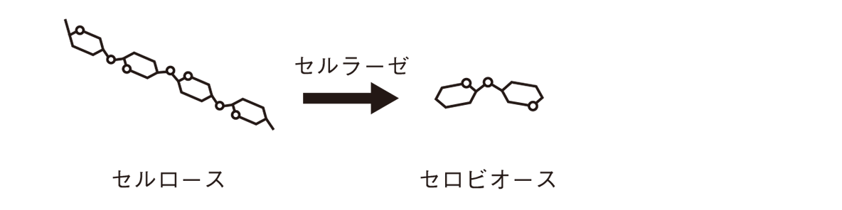 高校 化学 6章 2節 16 2 図の右の矢印より左のみ