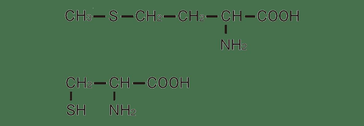 高校 化学 6章 2節 22 2 図の構造式のみ、「メチオニン」や「システイン」は不要